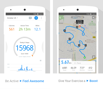 Pedometer, Step Counter & Weight Loss Tracker