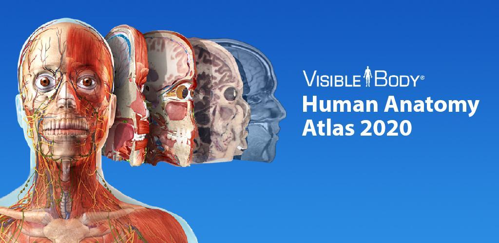 Human Anatomy Atlas 2020 v2020 0 69 APK | ApkMagic